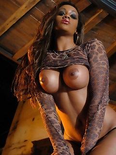 Perfect Girls Panties Porn
