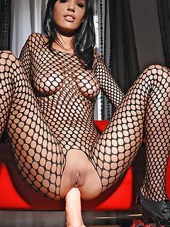 Perfect Fishnet Girls Porn
